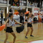 basket-en-folie-photo-jean-louis-navarro-(clp)-1450862899 7